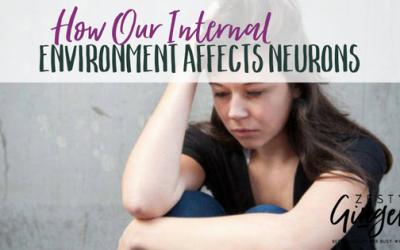 How Our Internal Environment Affects Neurons