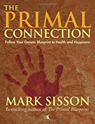 the-primal-connection