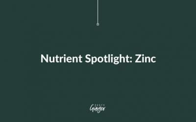 Nutrient Spotlight: Zinc